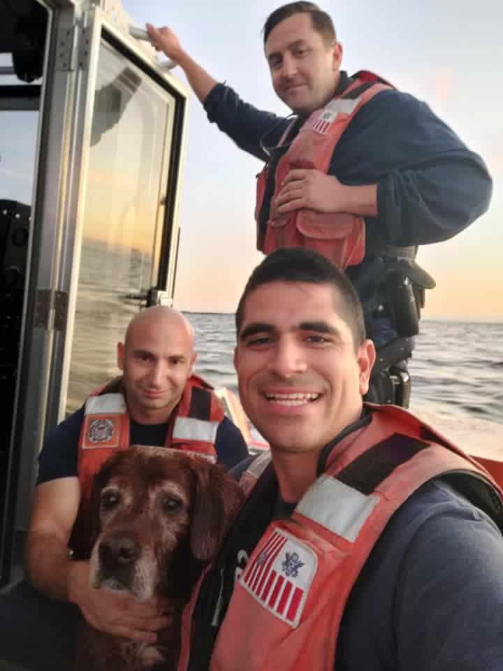 dog lost at sea
