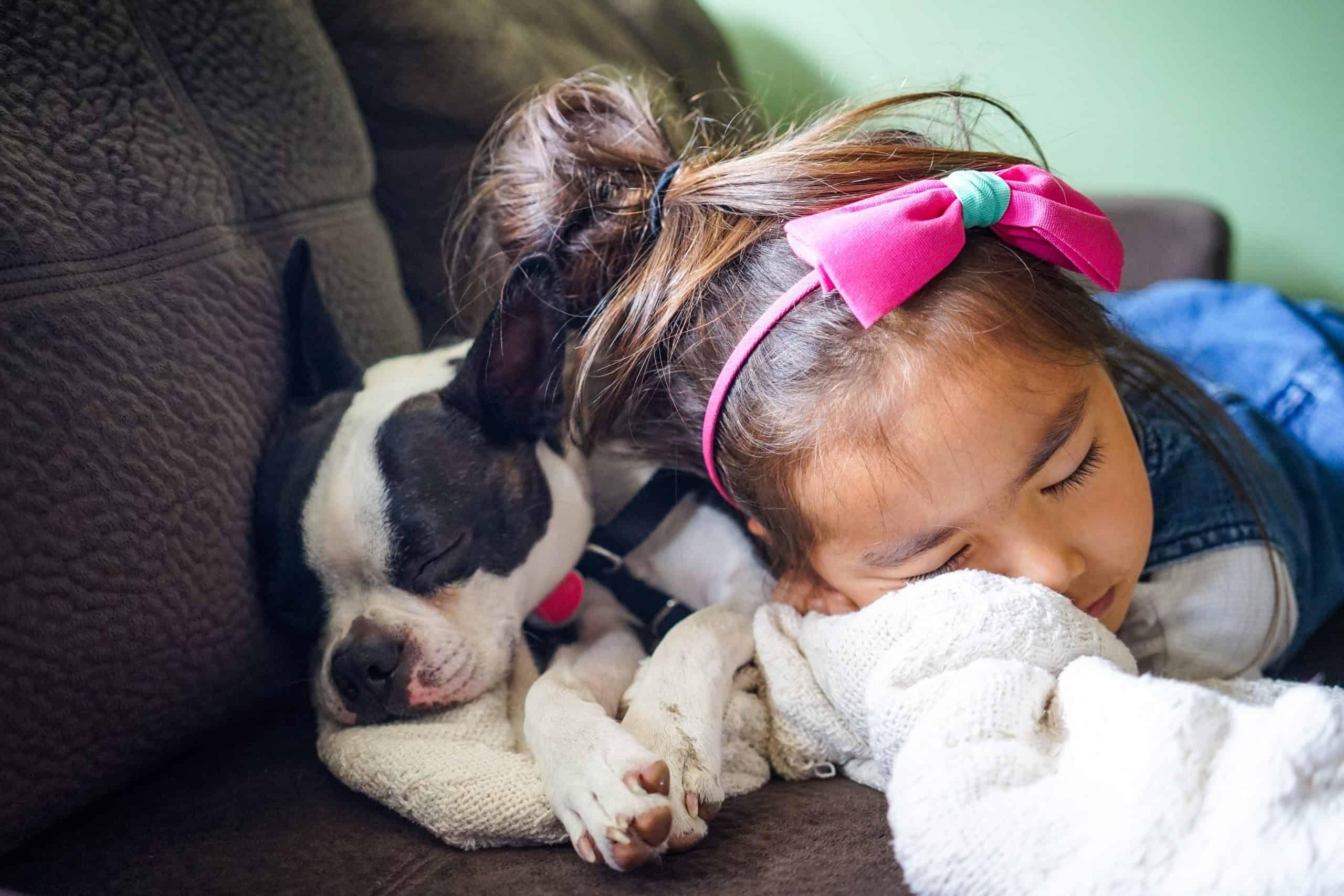 dogs dream
