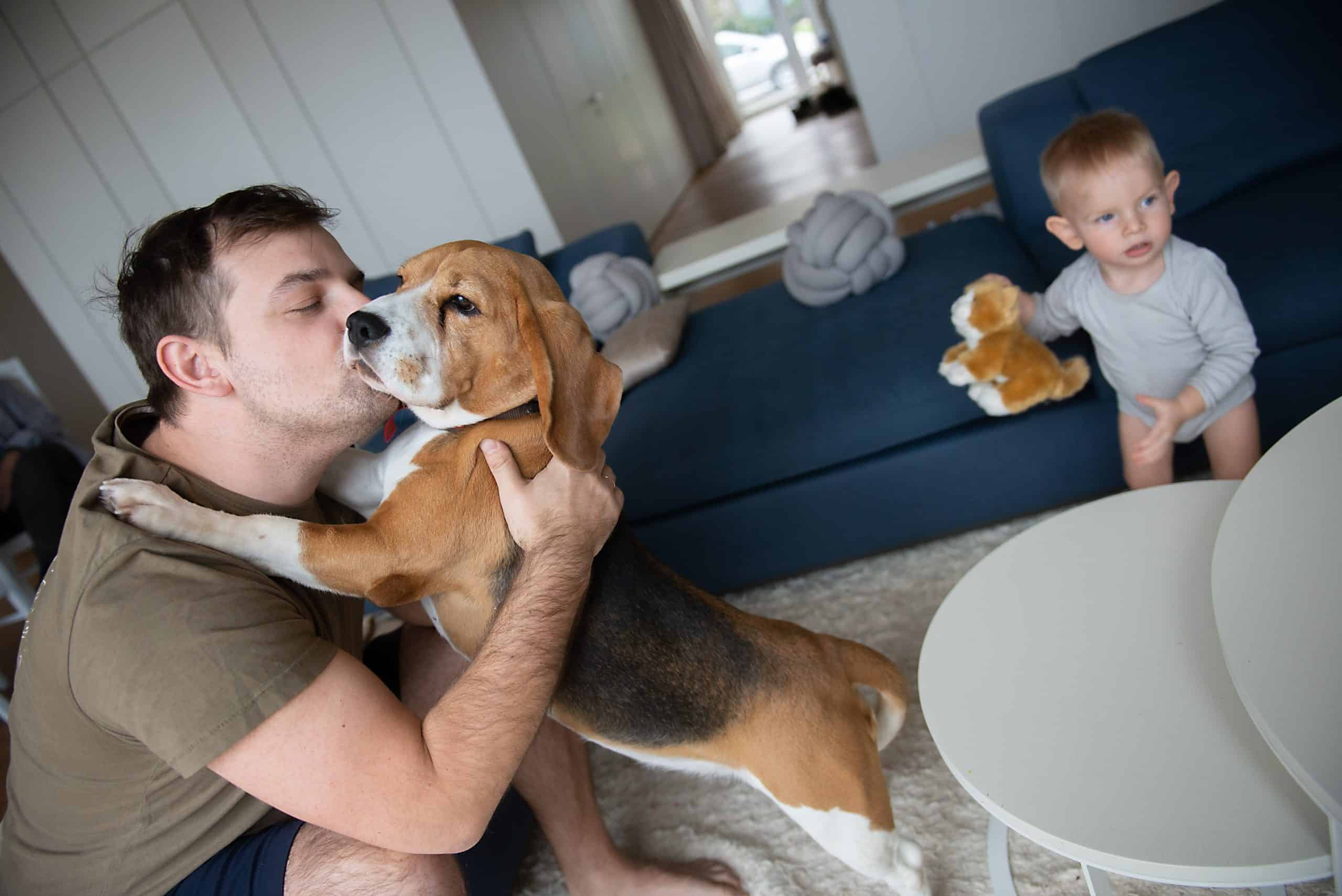 how dogs choose their favorite humans