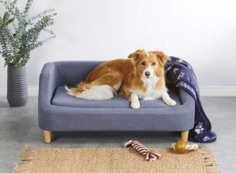 aldi dog sofa