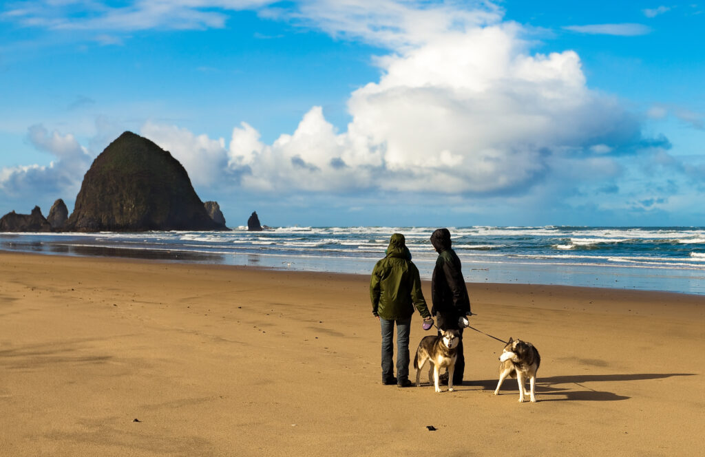 dog beaches in the US