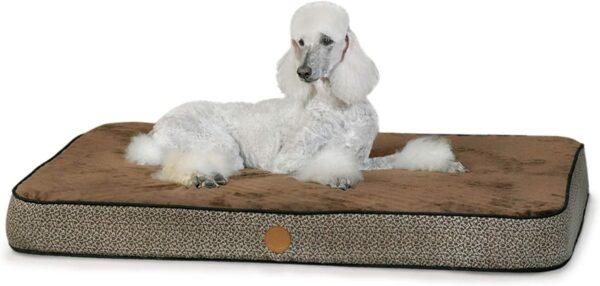 71f5hMpSL8L. AC SL1500 Superior Orthopedic IndoorOutdoor Bed