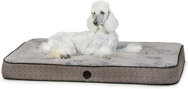 71iu24NUI6L. AC SL1500 Superior Orthopedic IndoorOutdoor Bed
