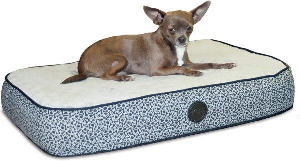 817MpM1T28L. AC SL1500 Superior Orthopedic IndoorOutdoor Bed